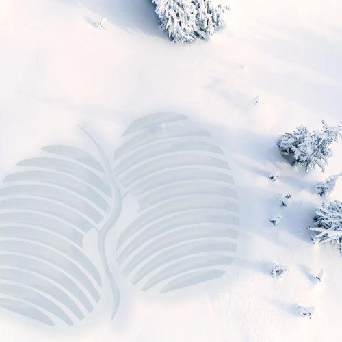 Herzlich Willkommen auf der Seite der Deutschen Nierenstiftung